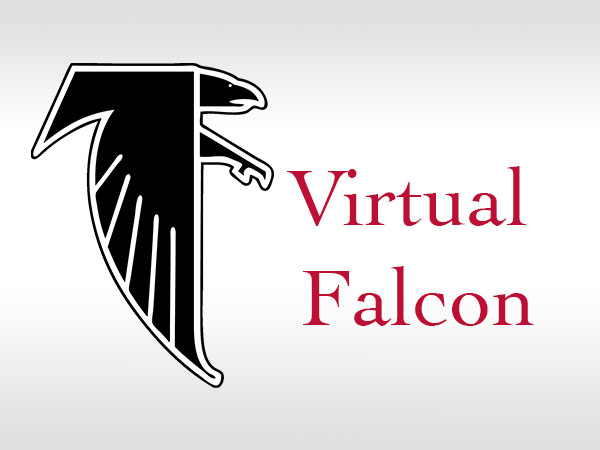2018 Virtual Falcon Course Offerings